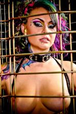 Vandal Vyxen Picture