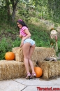 Charley Chase, picture 7 of 507