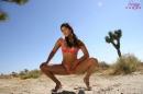 Fun In The Desert Sun picture 11